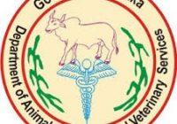 AHVS Karnataka Admit Card