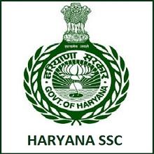 HSSC TGT Punjabi Admit Card